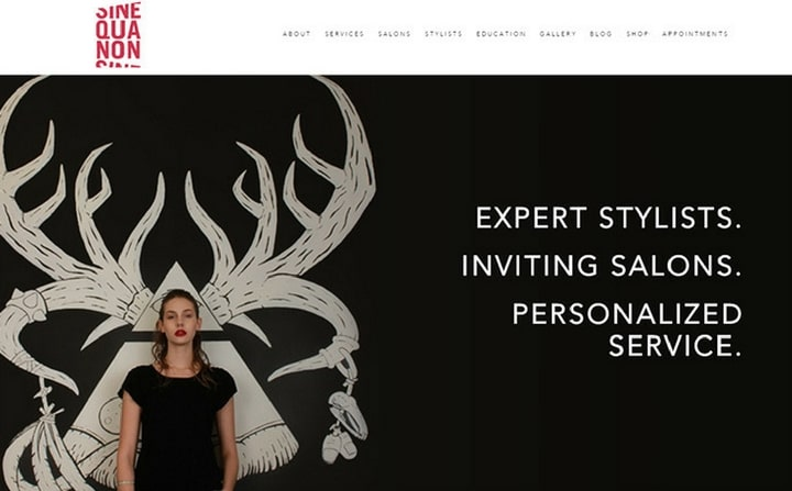 Sine Qua Non Salons | hair & beauty salon web designs