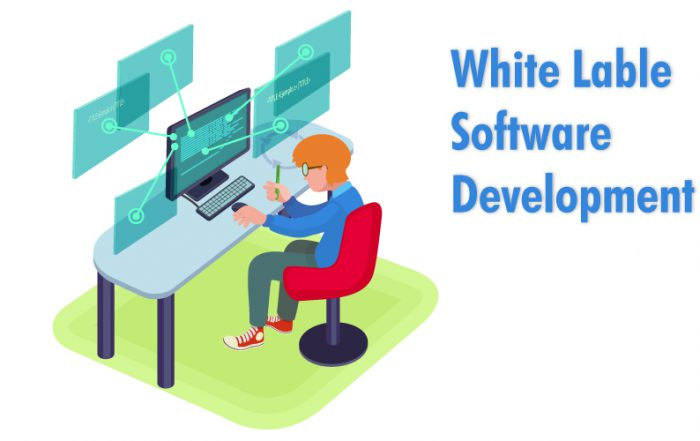 White Lable Software Development - Itsguru