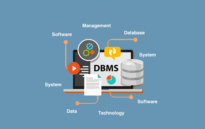The-Considerations-And-Perks-Of-Choosing-A-DBMS - ITs Guru